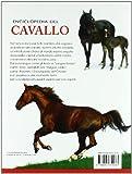 Image de Enciclopedia del cavallo