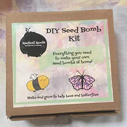 D I Y Seed Bomb Kit Amazon Ca Handmade