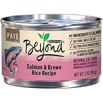 Purina Beyond Pate Salmon & Brown Rice Recipe Adult Wet Cat Food - Twelve (12) 3 oz. Cans