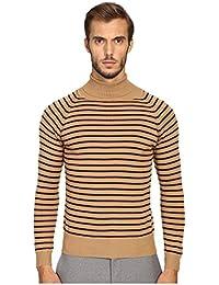 Mens Stevie Stripe Turtleneck Sweater