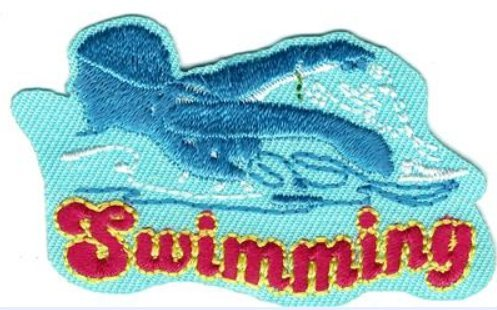 Cub Girl Boy SWIMMING Embroidered Iron-On Fun Patch Crests Badge Scout - Boy Patch Cub Scout