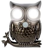 Super Bright LED Owl Motion Sensor Light Shines & Hoots To Announce Visitors