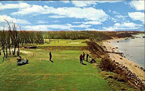 Golfers Paradise And Pebble Beach, North Road East Greenport, New York Original Vintage Postcard ()