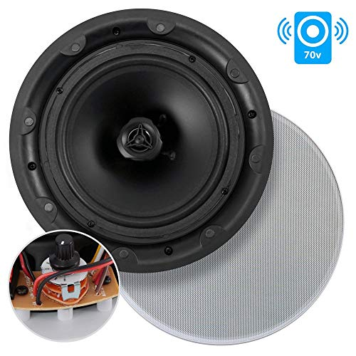 (Ceiling and Wall Mount Speaker - 8