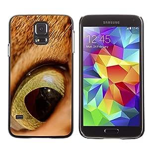 Be Good Phone Accessory // Dura Cáscara cubierta Protectora Caso Carcasa Funda de Protección para Samsung Galaxy S5 SM-G900 // Cat Orange Ginger Eye Shorthair Pupil