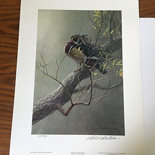 (Limited Edition Print Wood Duck Pair in Willow-ROBERT BATEMAN)