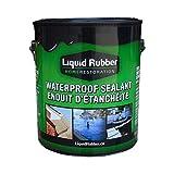 Liquid Rubber Canada Waterproof Sealant Black 1 Gallon