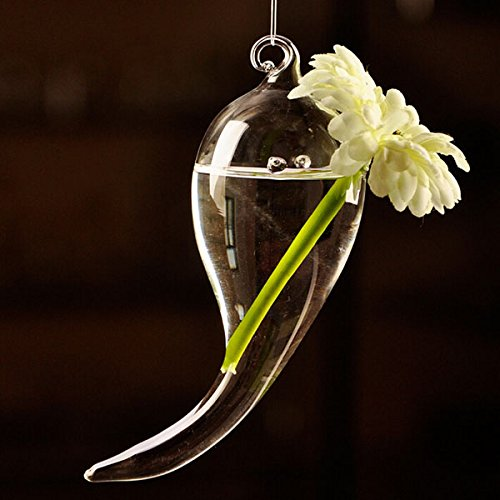 Hanging Symbol Shape Flower Glass Vase Hydroponic Plants Container