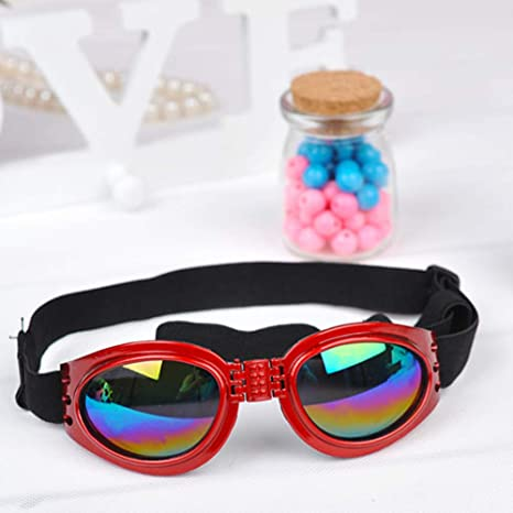 DishyKooker - Gafas de Sol Plegables Cortavientos para Gatos ...