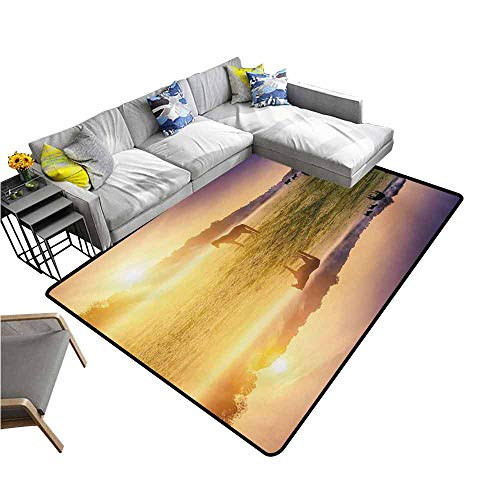 Long Kitchen Mat Bath Carpet Nature,Horse Valley in South with a Lake Reflection and Sun Rising Above Mountains Print,Multicolor 64
