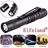 Best  - Elfeland XPE AAA Mini Camping LED Penlight Flashlight Review