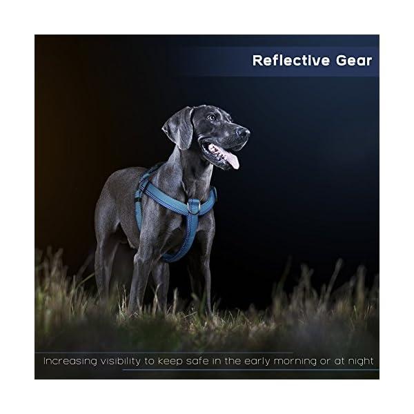 PETBABA No Pull Dog Harness Front Clip Choke Free Reflective Safe at Night...