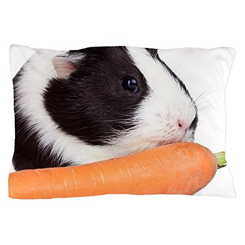 CafePress - Guinea Pig Eating A Carrot - Standard Size Pillow Case, 20