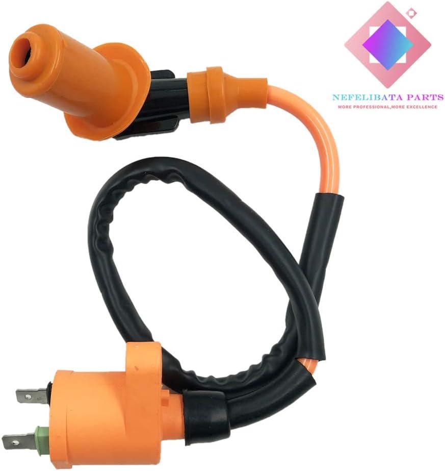 Fuel System Motors Nefelibata Universal Sparking Plug 6 pins Wire ...