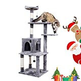 PAWZ Road Activity Tower 57