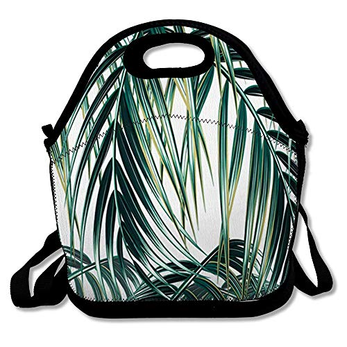 Tropic Supply Miami (Insulated Lunch Bag for Women Men Leaf Green Tropical Palm Leaves Floral Nature Pattern Tropic Tree Jungle Miami Spring Reusable Girls Lunch Tote for Office School or)