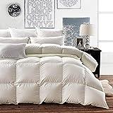 Goose Down Comforter Queen - Luxury Goose Filled Down Feather Comforter Duvet Insert - 1200TC 100% Cotton Shell Soft 500-600 High Fill Power for All Season Bedding, Light Tan