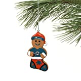 Miami Dolphins Resin Gingerbread Man Ornament