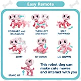RACPNEL Remote Control Robot Dog Toy, RC