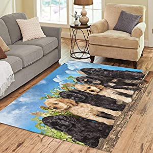 Semtomn Area Rug 2' X 3' Brown Puppy Family American Cocker Spaniel Dogs Funny Litter Home Decor Collection Floor Rugs Carpet for Living Room Bedroom Dining Room 7