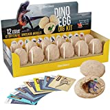 Dino Egg Dig Kit - Break Open 12 Unique Dinosaur Eggs and Discover 12 Cute Dinosaurs - Archaeology Science STEM Gift