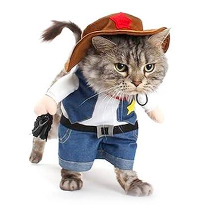 Amazon.com   Meihejia Cute Cat Costume 744a625f1256