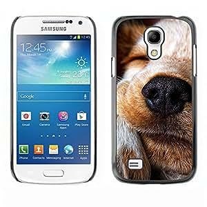 Vortex Accessory Carcasa Protectora Para SAMSUNG GALAXY S4 MINI i9190 (MINI VERSION) - Jack Russell Labrador Retriever Terrier Dog -