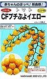 渡辺採種場 ミニトマト CFプチぷよイエロー ペレット種子約10粒