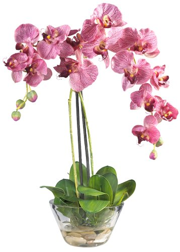 Elegant Silk Flowers (Nearly Natural 4643-PP Phalaenopsis with Glass Vase Decorative Silk Flower Arrangement, Purple)