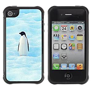 Suave TPU GEL Carcasa Funda Silicona Blando Estuche Caso de protección (para) Apple Iphone 4 / 4S / CECELL Phone case / / Cool Penguin /