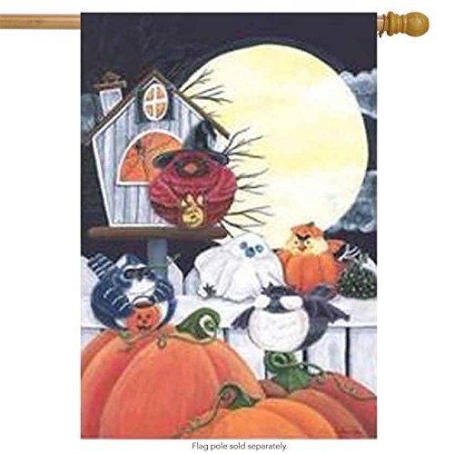 (Evergreen Halloween Portly Birds House Flag)