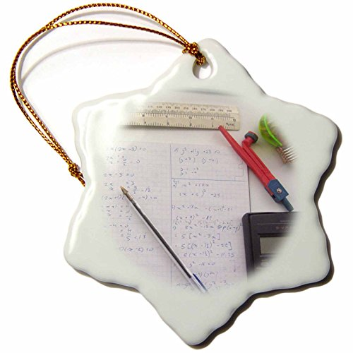 3Drose Orn 113081 1 Math Photography Mathematics Equations Calculator For Nerd Teacher Tutor Student Snowflake Ornament  Porcelain  3 Inch