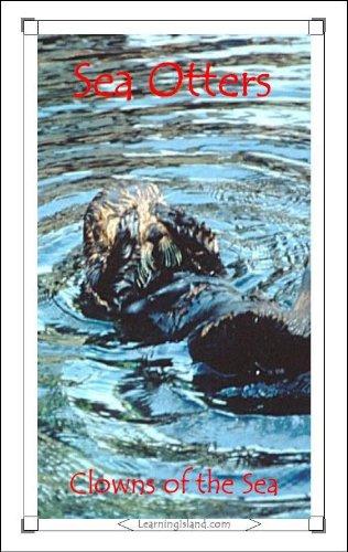 Sea Otters: Clowns of the Sea (15-Minute Books Book 323)