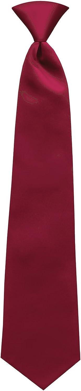 Satin Solid Color Pre-tied Neck Ties