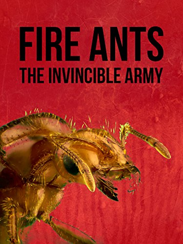 - Fire Ants: The Invincible Army