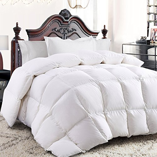 White Goose Down Comforter Queen Size,Duvet Insert,Heavy Warmth for Winter,50 Oz Fill Weight,750 Fill Power,100% Cotton Shell,Hypoallergenic with Corner Tabs,White Color