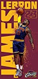 Lebron James Cleveland Cavaliers Slam Dunk Beach Towel 28 in x 58 in