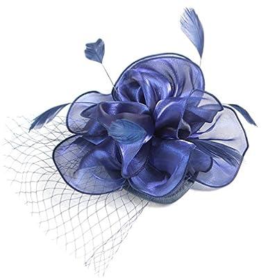 Felizhouse Flower Feather Fascinator Hats for Women Party Derby W/Headband Clip