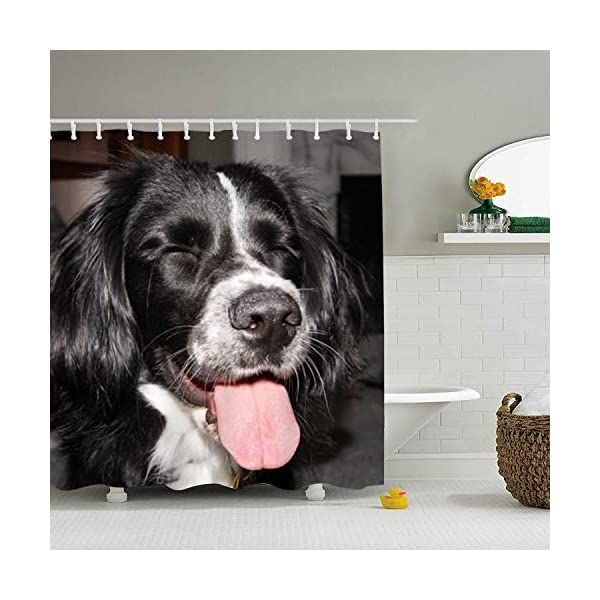 buygohome Border Collie - Shower Curtain - Water, Soap, and Mildew Resistant - Shower Hooks are Included 1