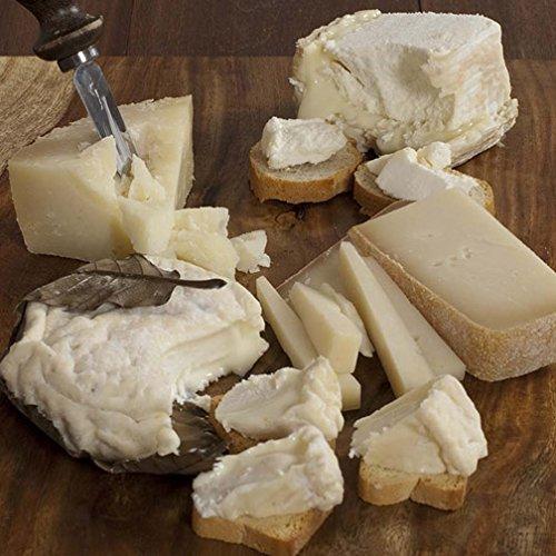 Goat's Milk Cheese Board: A Study in Chevre