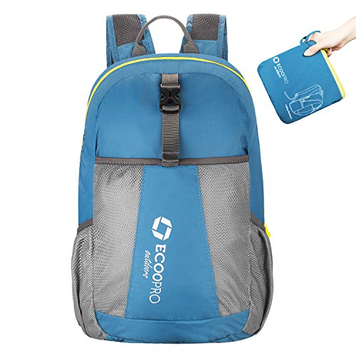 ECOOPRO 20L Lightweight Packable Backpack Hiking Daypacks Foldable Durable Waterproof Travel Daypack for Men Women and Teens (Blue)
