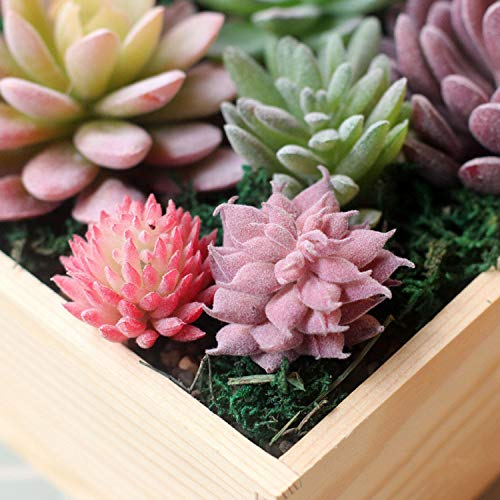 YP-fashion-Artificial-Succulents-Land-Lotus-Plants-Grass-Desert-Artificial-Plant-Landscape-Fake-Flower-Arrangement-Garden-Home-Decoration58