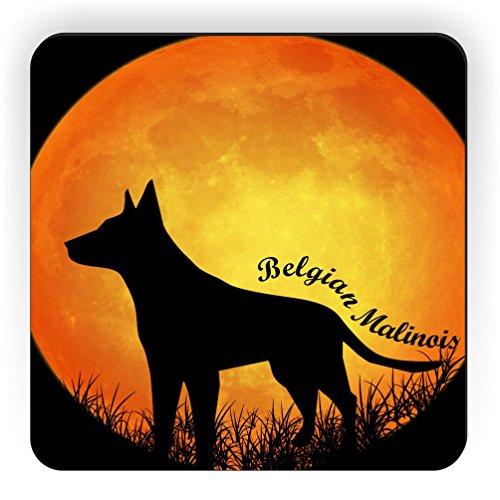 Rikki Knight Belgian Malinois Dog Silhouette by Moon Design Square Fridge - Silhouette Belgian Malinois Dogs