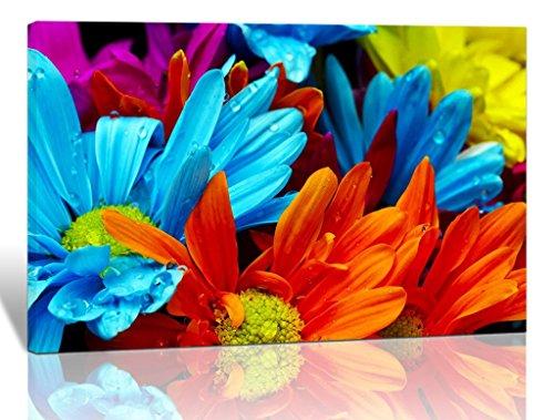 Colorful Artwork For Wall: Amazon.com