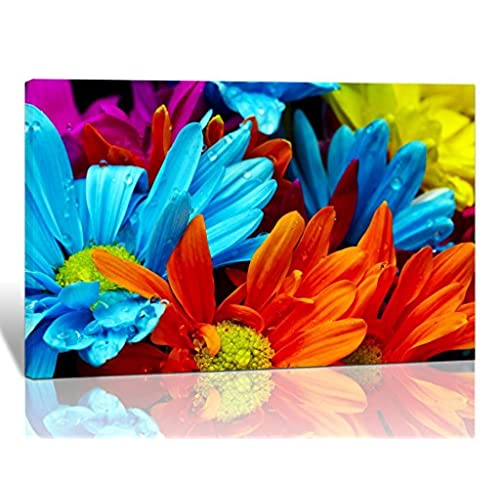 Purple Verbena Art Colorful Rainbow Color Blossom Sunflowers Pictures Photo Prints On Canvas Wall Paintings HD Modern Giclee Walls Artwork For Home