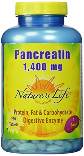 Nature's Life Pancreatin Tablets, 1400 Mg, 250 Count