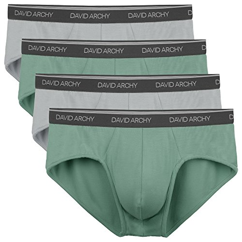 David Archy Men's 4 Pack Bamboo Rayon Soft Lightweight Pouch Briefs No Fly (L, Green/Gray)
