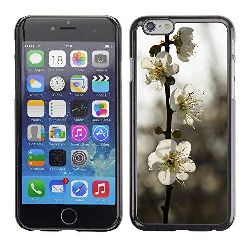 """Premio Sottile Slim Cassa Custodia Case Cover Shell // F00008205 une fleur // Apple iPhone 6 6S 6G 4.7"""""""