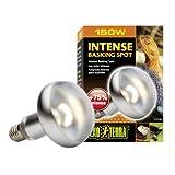 Exo Terra Intense Basking Spot Lamp, 150-Watt
