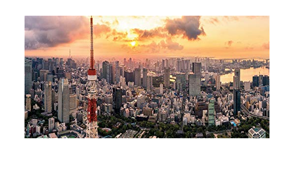 Landscape 10x15 FT Photo Backdrops,Tokyo Skyline with Tokyo Tower and Rainbow Bridge Tokyo Japan Night Scenery View Background for Baby Shower Bridal Wedding Studio Photography Pictures Green Navy
